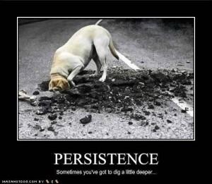 persistence-300x261
